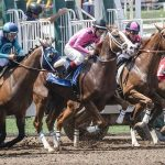 Foxfield Races: A Charlottesville Tradition