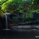 Cool Off at these Swimming Holes Near Charlottesville!